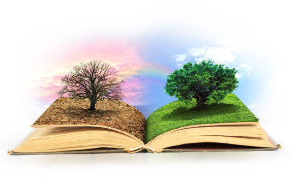 Concept of changes. Open book. One side full of grass with a life tree, different side is desert with a dead tree. Concept of doubleness.